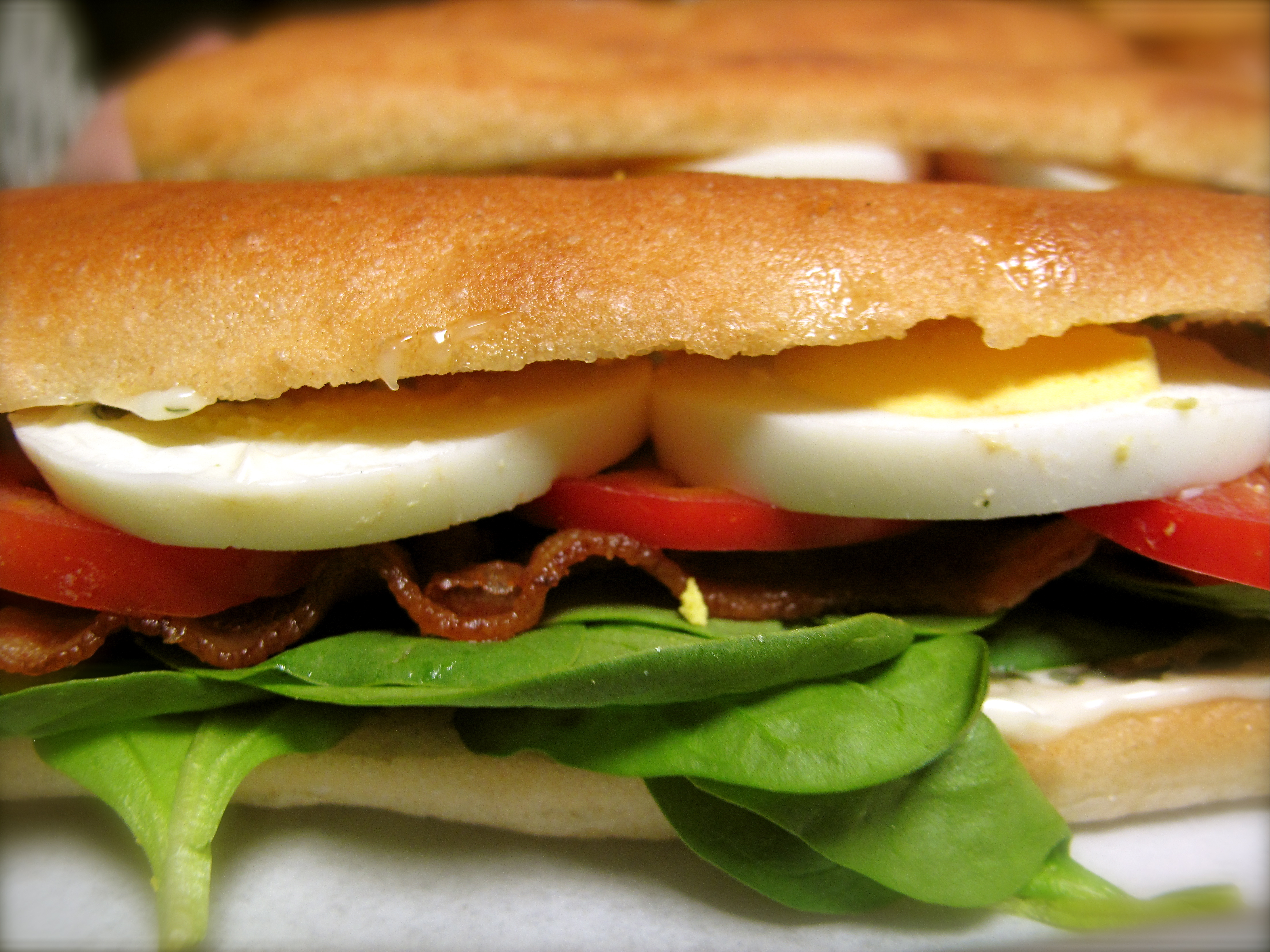 wich tomato and bacon sandwiches with bacon basil mayo avocado bacon ...