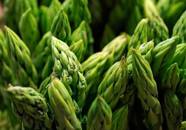 asparagus-1